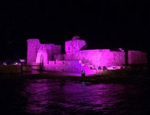 Sidon sea castle in pink